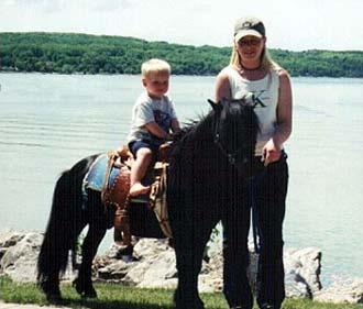 Texas Pony Rental Pony Rides In Dallas County Tx Rent A